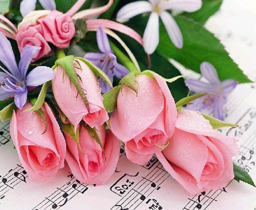 Новый-мозаика-полный-разложены-алмаз-живопись-вышивка-Красивая-Музыка-розы-Цветы-цветочные-бусы-вышивки-крестом-картины